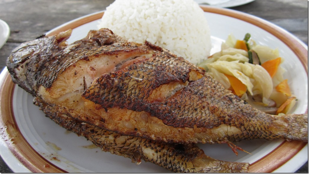 grilled red snapper and rice