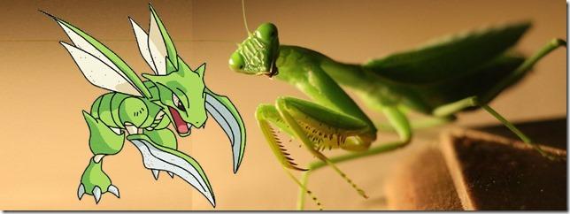 Scyther & Mantis